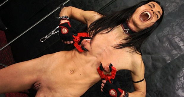 vampire-clamps